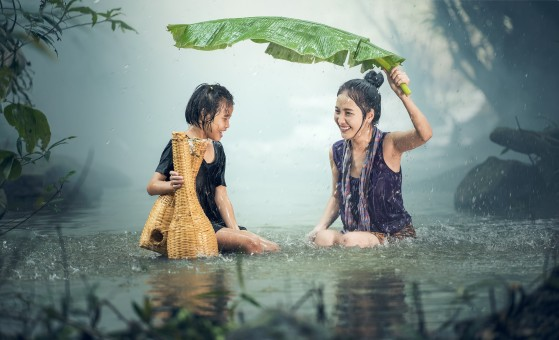 Organiser une randonnée dans les parcs thaïlandais pour un voyage sportif marquant
