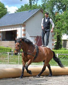 Équipement de base pour votre première équitation