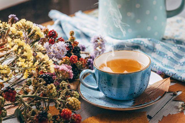 Quel thé choisir pour maigrir rapidement ?